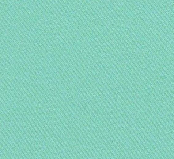 0,5m Baumwolljersey in mint – wunderschönes mint – Kelly – uni / einfärbig – Ökotex